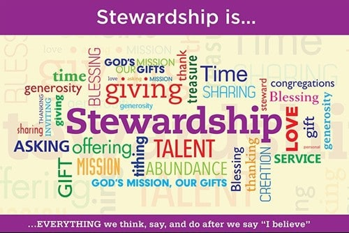 stewardship-purple