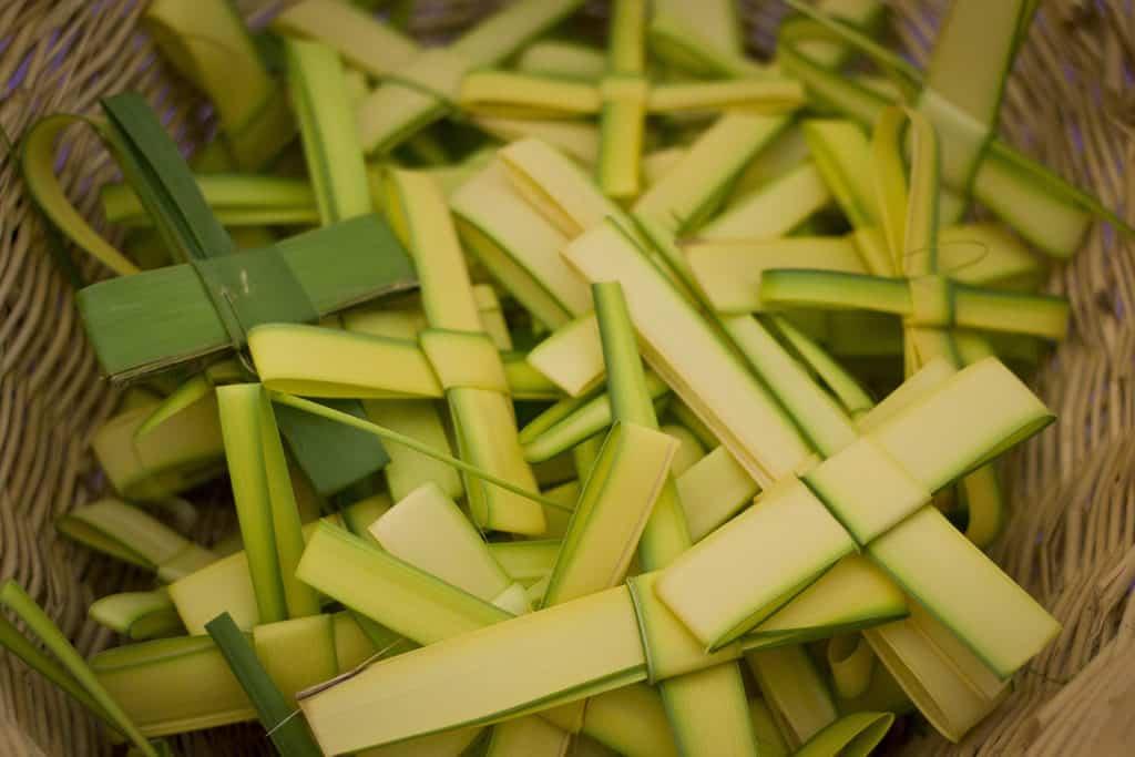 stvasilios_palm_crosses